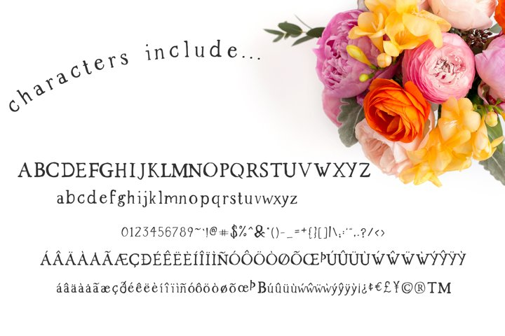 The Market Duo - Rustic Serif & Sans Font Combo - Free Font Of The Week Design0