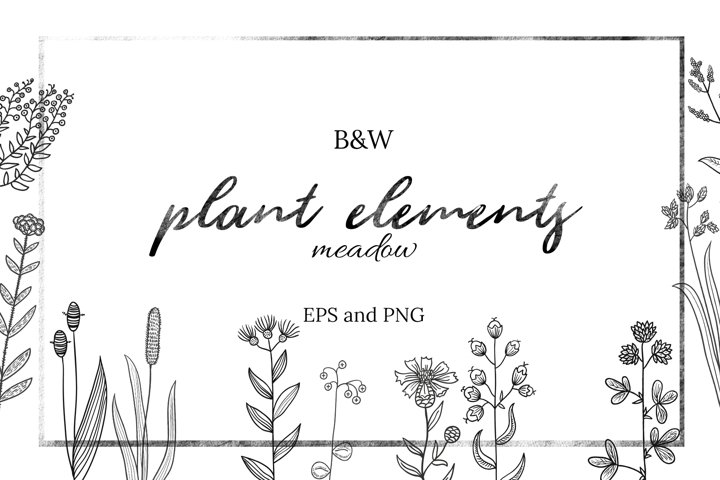 20 black and white plant elements