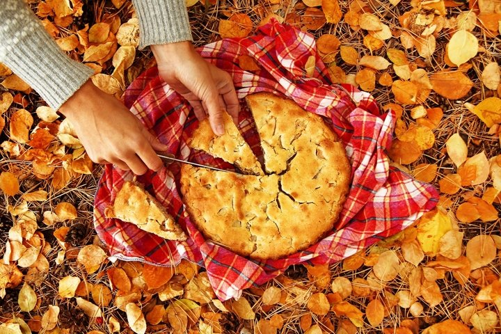 Hands of woman with pieces of apple pie.