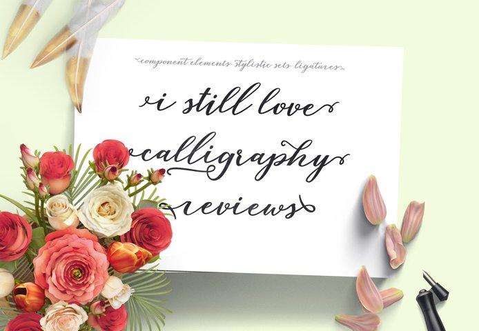 Lovelia Script & Comic - Free Font of The Week Design3