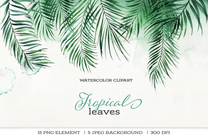 Watercolor clipart palm leaves, jungle, tropical leaves.