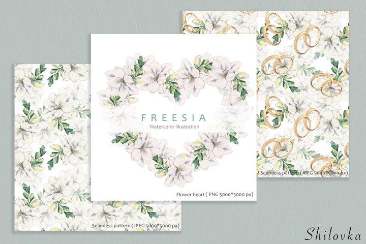 Freesia. Watercolor illustration