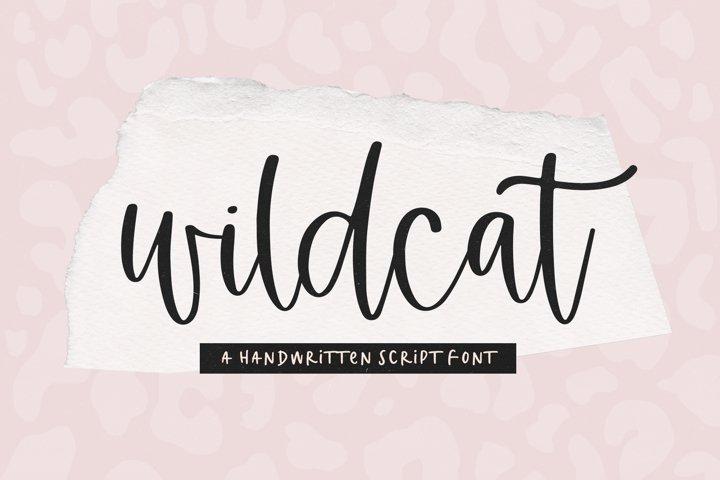 Wildcat - A Handwritten Script Font