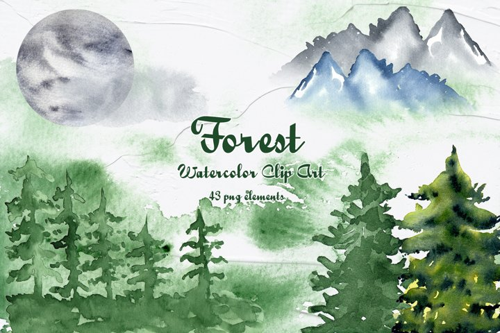 Forest Watercolor Clipart