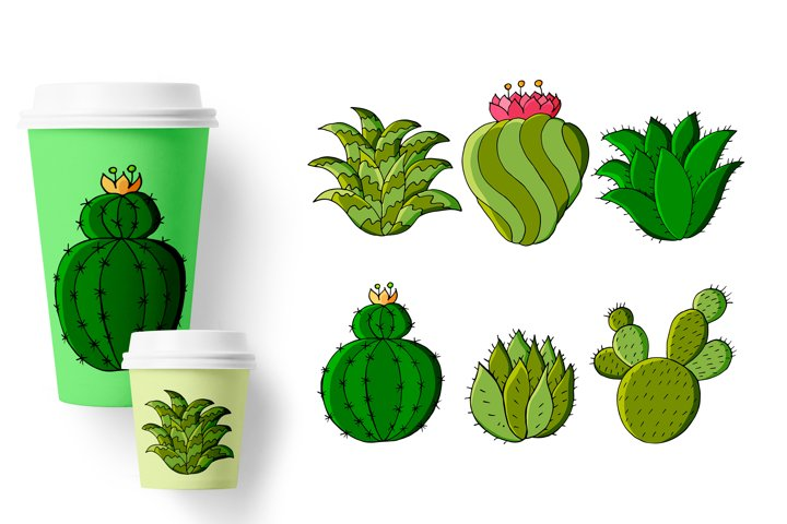Cacti, aloe, succulents in a creative collection