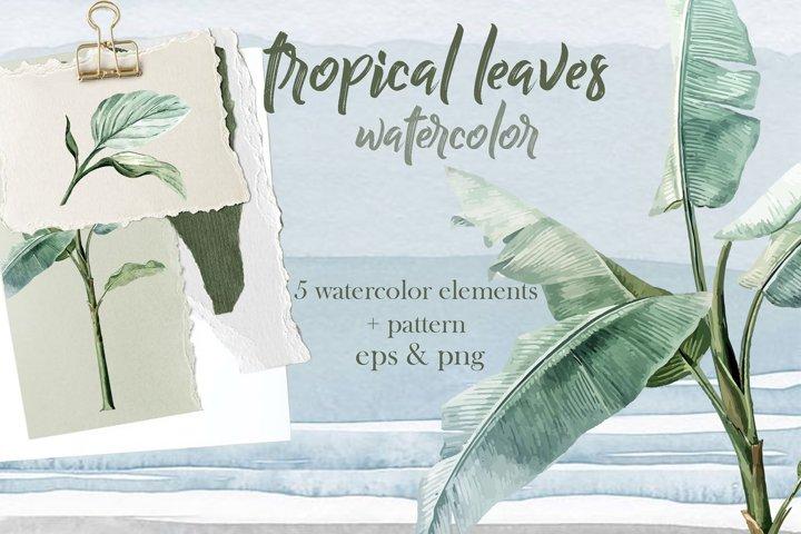 Tropical palm watercolor vector