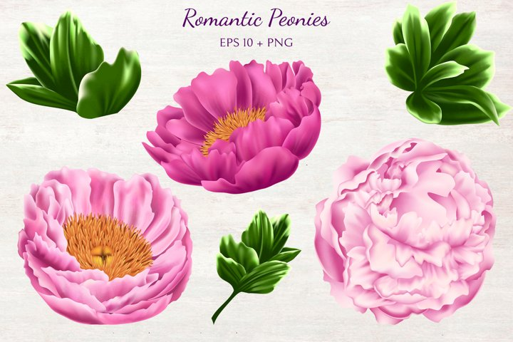 Romantic Peonies example 1