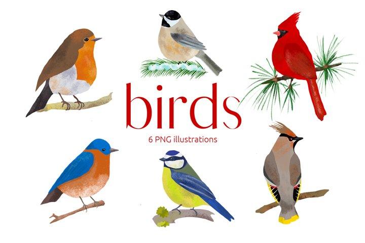 Birds Illustration Clip art , Decor Art, Bird art, PNG, Down