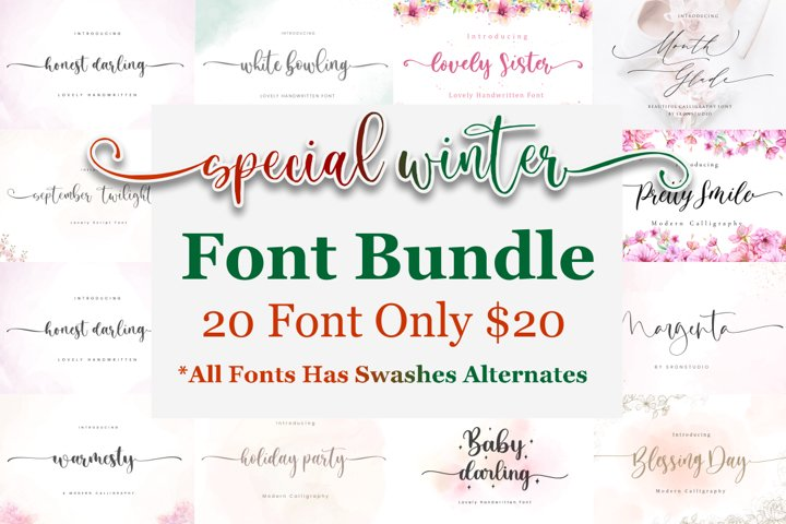 Special Winter Font Bundle !!