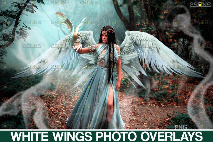 Realistic White Angel Wings Photoshop Overlays