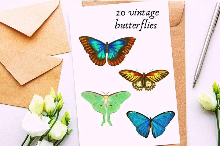 20 Vintage Butterflies llustrations, Retro Butterflies