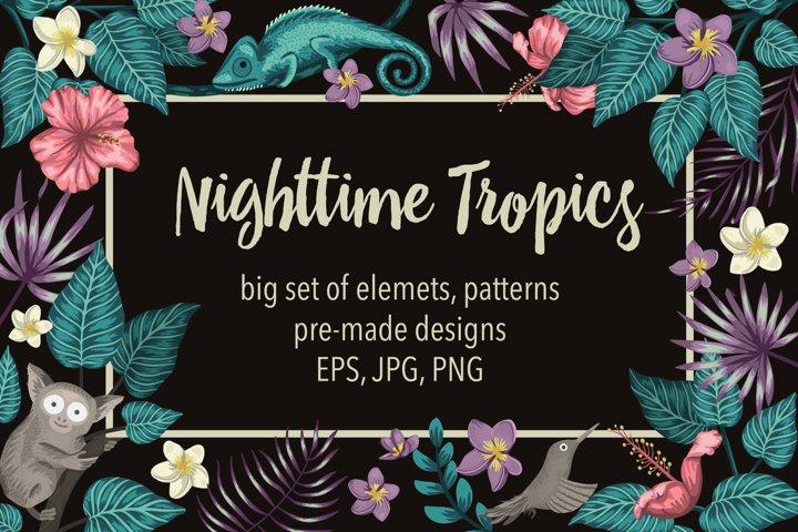 Download Nighttime Tropics 416786 Illustrations Design Bundles