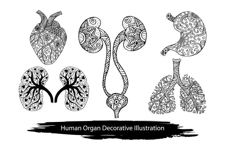 Doodle decorative human organ