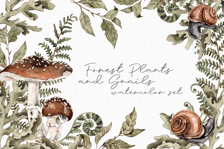 Forest plants and snails watercolor