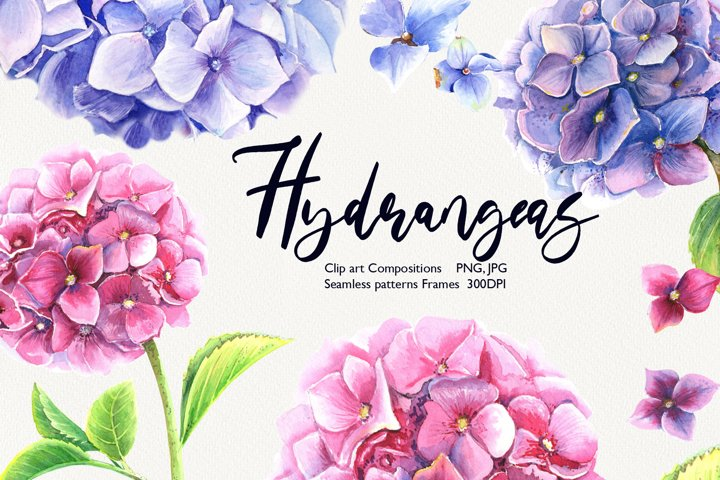 Watercolor Hydrangeas Clip Art