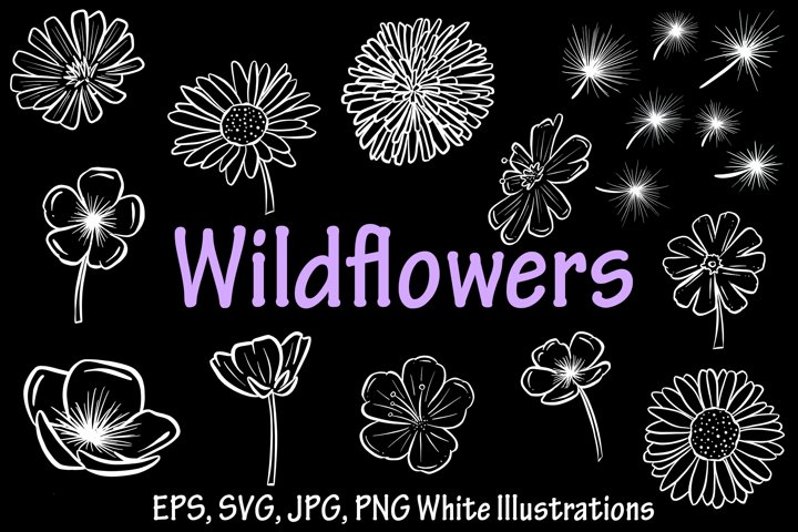 Beautiful Black and White Wildflower Illustration Collection