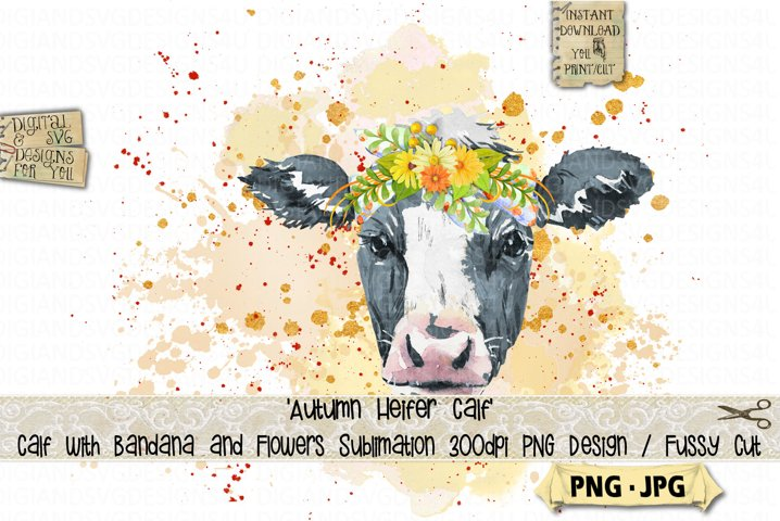 Fall Heifer calf with flowers | Sublimation design | Cow png