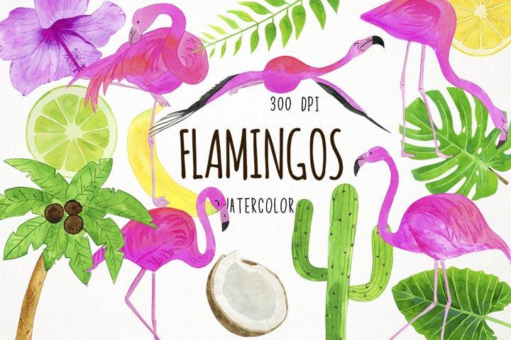 Watercolor Flamingo Clipart, Flamingo Clip Art, Flamingo PNG