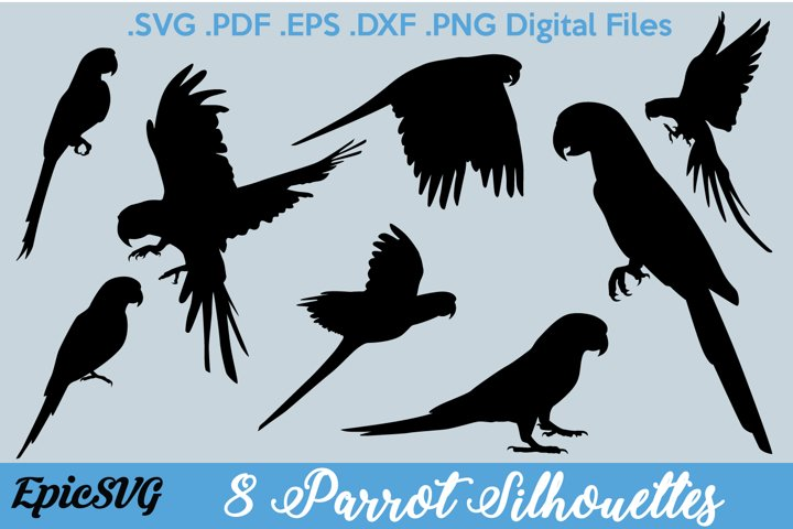 8 Parrot Silhouettes | Digital Files for Cut Machines