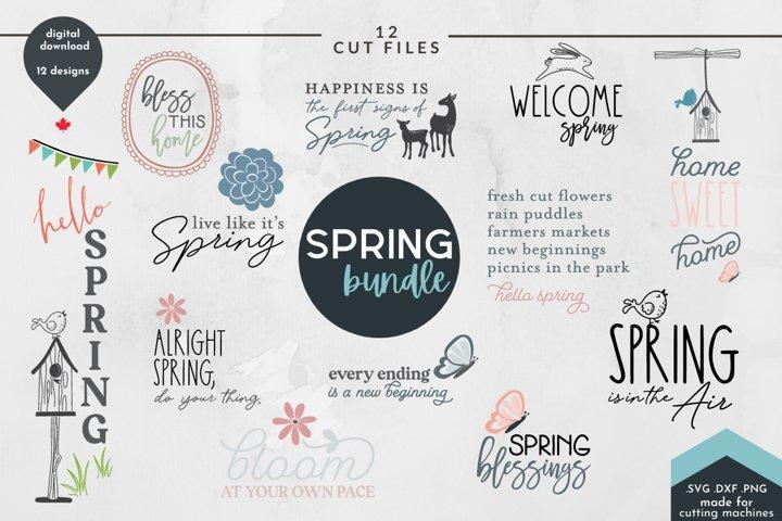 Spring SVG Bundle - Easter Cut Files -