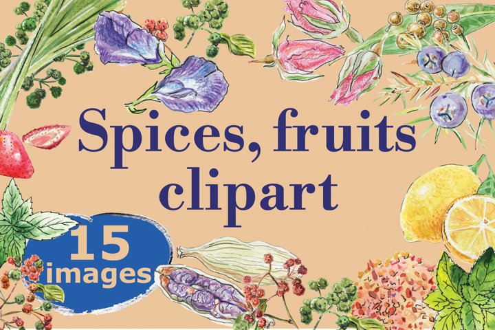 Watercolor spices, fruits