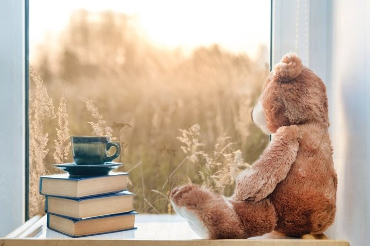 Teddy bear with cup of coffee and books on window still.