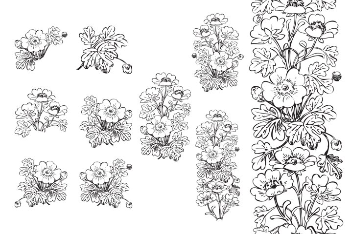 Hand drawn botanical floral bush hibiscus isolated on white