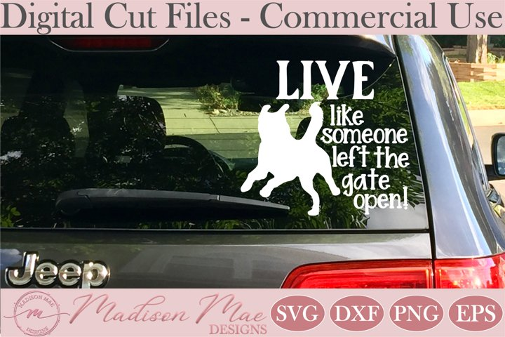 Dog SVG, Live Like Someone Left The Gate Open SVG, Car Decal