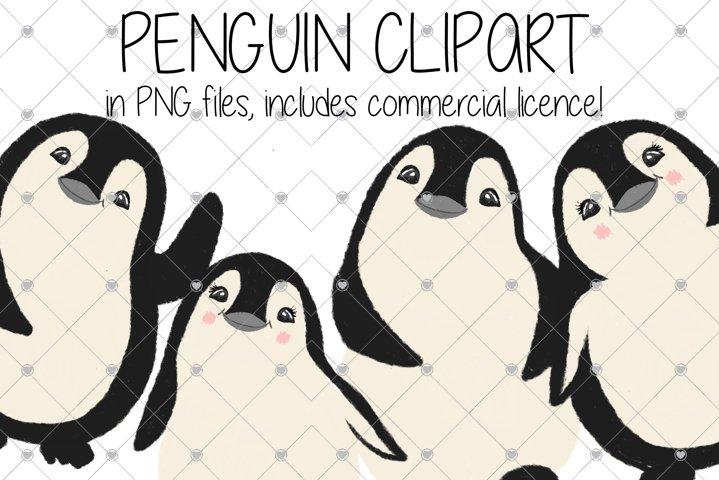 Penguins, Animals, Family, Zoo, Penguin, Animal, Christmas,