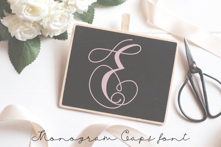 Monogram swans