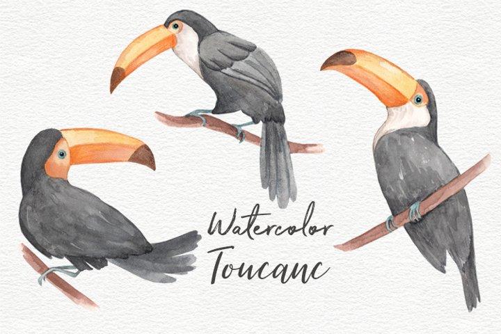 Toucans watercolor clipart collection.