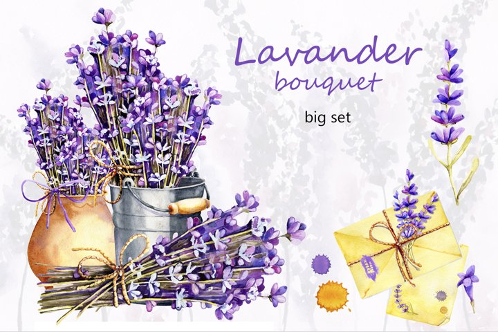 Big watercolor set of illustrations with lavender flowers.