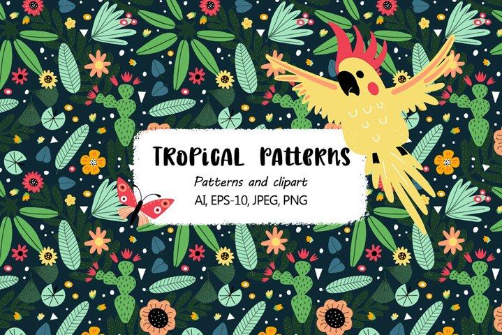 Tropical parrots set