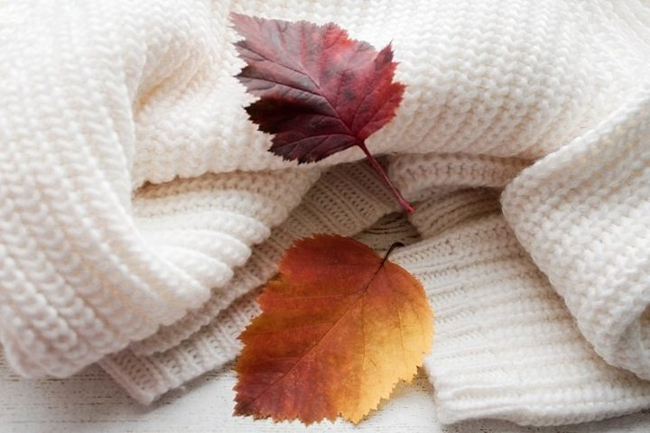 Cozy sweater & hawthorn leaves