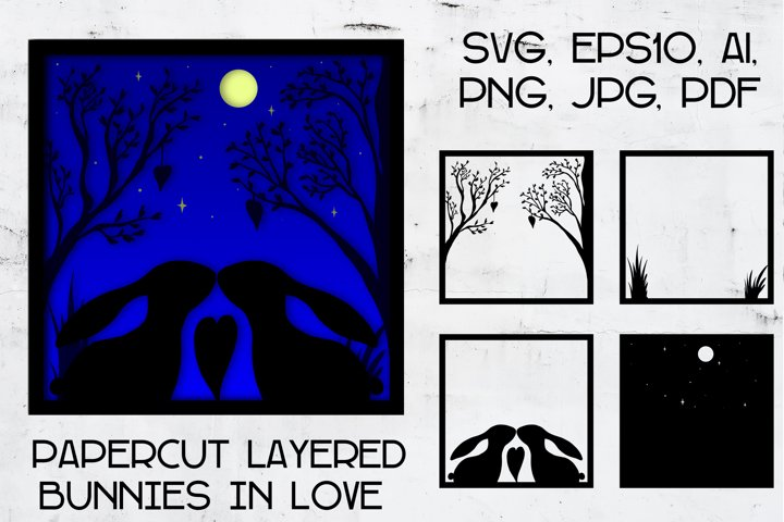 Paper cut | Layered papercut | love Rabbit light box