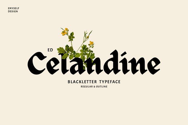 ED Celandine