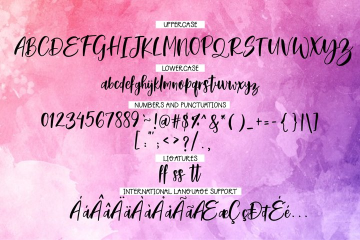 Morning Glory Font Duo  - Free Font of The Week Design4