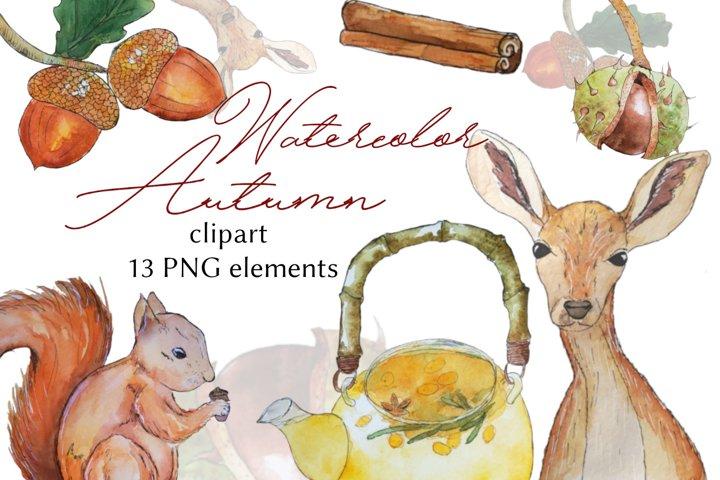 Autumn watercolor clipart, autumn bundle