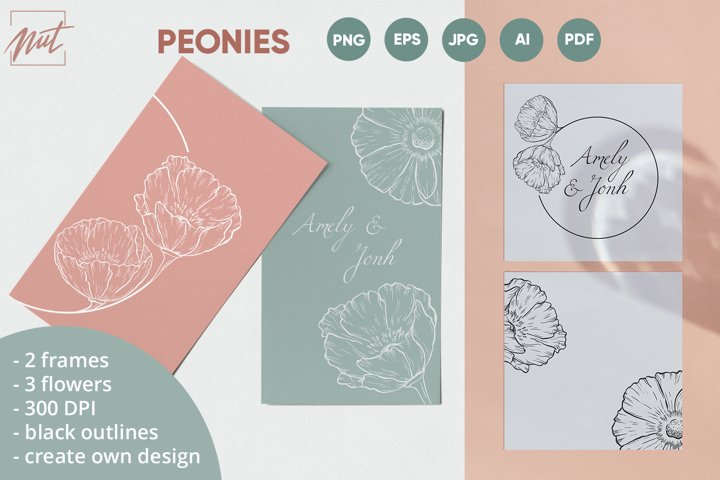 Peonies, floral frames. Wedding frame with peonies. eps, png