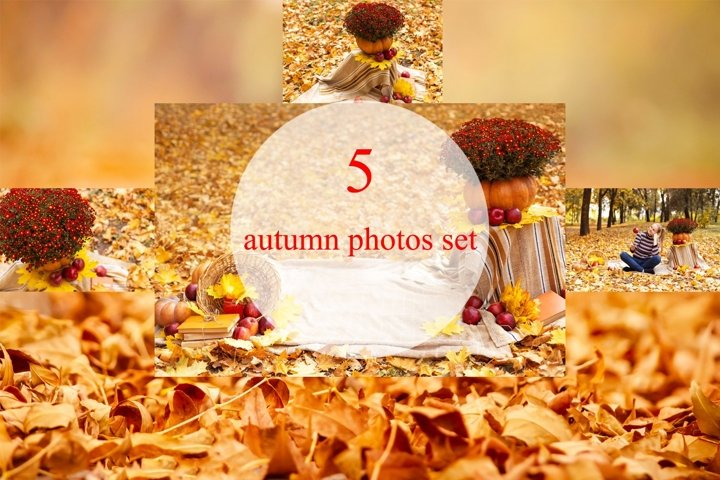 5 autumn, fall photos bundle