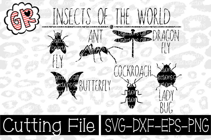 Insects - SVG - Vector - Cut File - Insect Svg - Bugs-