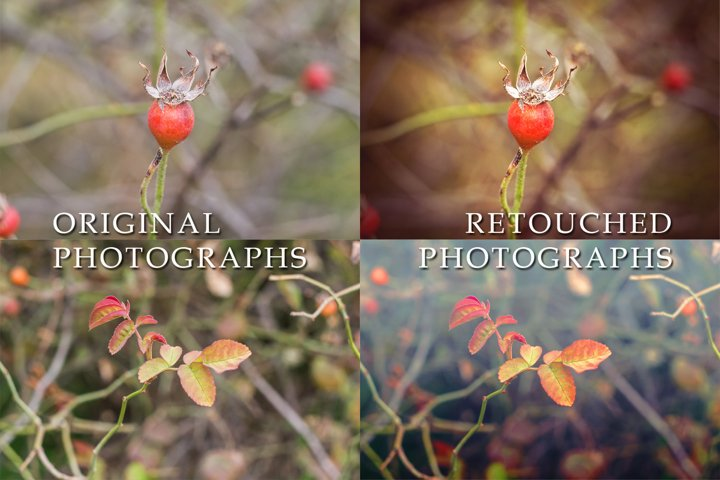 4 cold autumn photos example 1