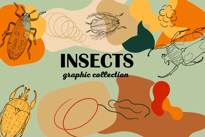 Insects. Graphic collection