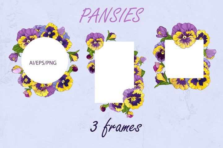 3 frames with purple pansy flowers