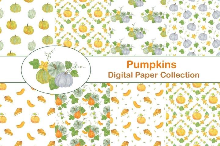 Fall Thanksgiving Pumpkins Digital paper pack