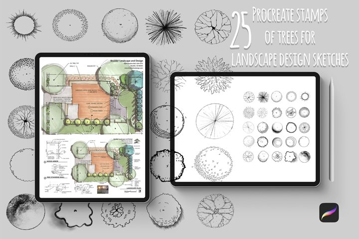 Procreate stamps of trees for landscape design sketches