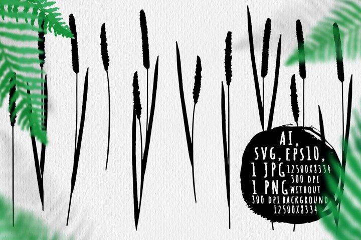 Reeds silhouettes bundle
