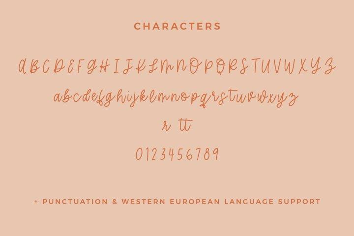 Hey Pumpkin Script Font - Free Font Of The Week Design2