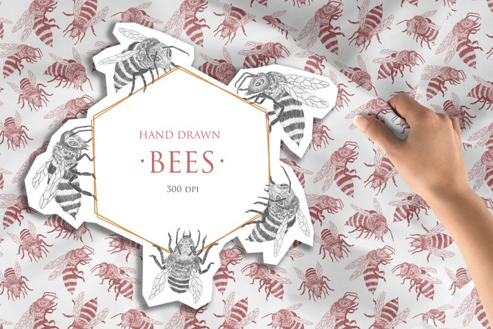 BEES Hand Drawn Collection