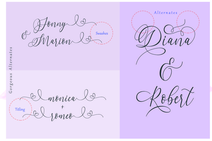 Dialova - Beautiful Calligraphy - Free Font of The Week Design6